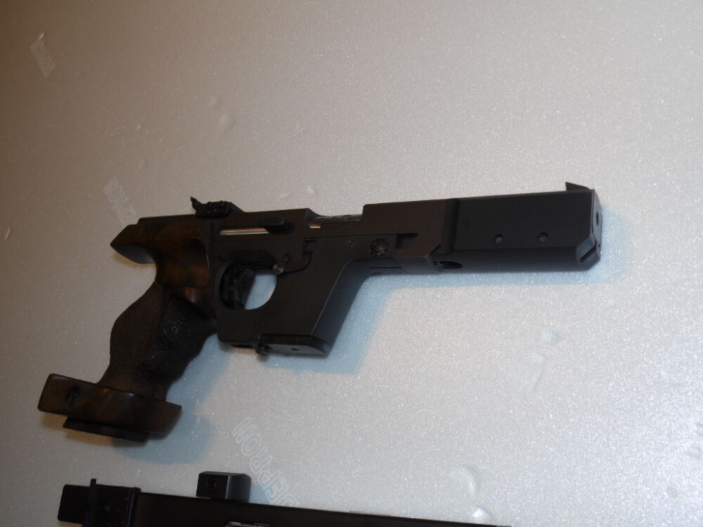Walther Mod GSP